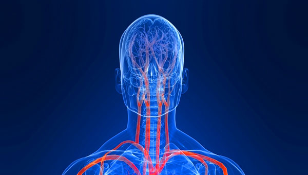 Затылочные головные боли могут быть последствием спазмов сосудов