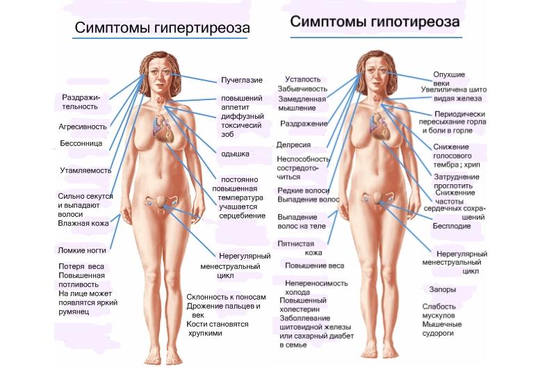 Симптомы гипо- и гипертериоза
